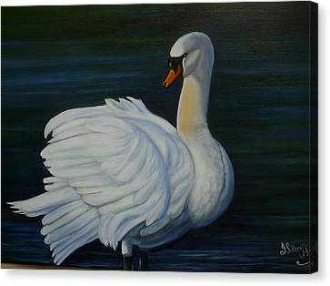 Mute Swan Canvas Print by Janet Silkoff