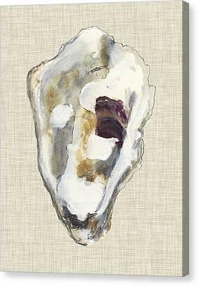 Oyster Shell Canvas Prints Fine Art America