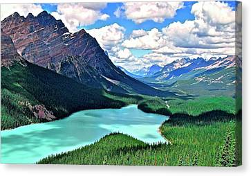 Peyto In August Canvas Print