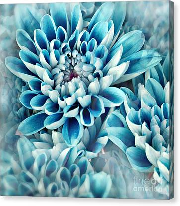 Photo Illustration Of Abstract Flower Canvas Print by Annmarie Young