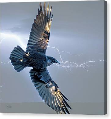 Raven In Lightning Storm Canvas Print