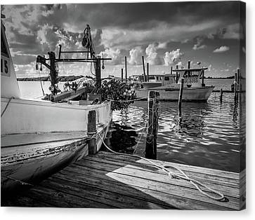 Ready To Go In Bw Canvas Print
