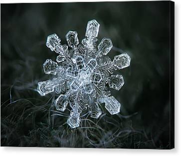 Real Snowflake - 04-feb-2018 - 1 Canvas Print