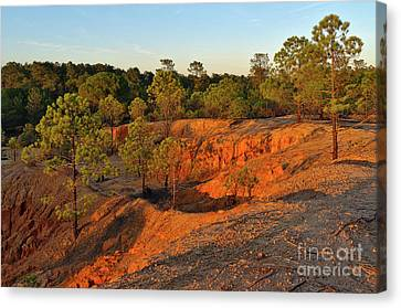 Red Sunset Cliffs Canvas Print