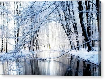 Reflecting Winter Creek Canvas Print