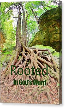 Rooted In God's Word Canvas Print