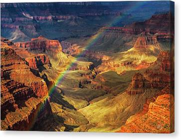 Royal Rainbow Canvas Print