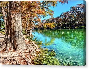 Scenic Frio River Canvas Print