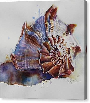 Seashell Swirl Canvas Print