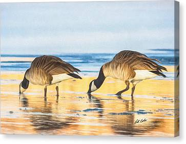 Skimming The Gold Canvas Print