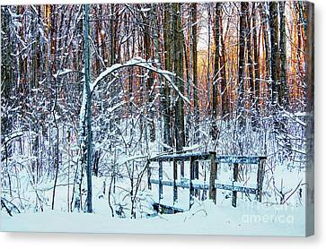 Small Bridge Covered Of Snow Canvas Print