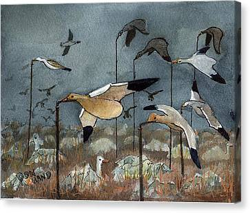 Snow Goose Decoys Canvas Print