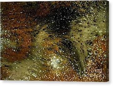 Acidstain Spaceview Canvas Print