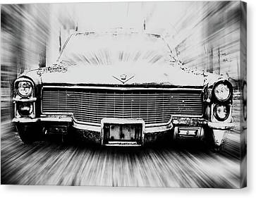 Super Cadi Canvas Print