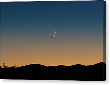 That Desert Moon Canvas Print