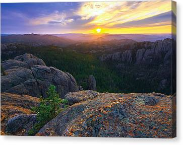 View of Harney Peak South Dakota Black Hills Posters, Wood /& Metal Signs