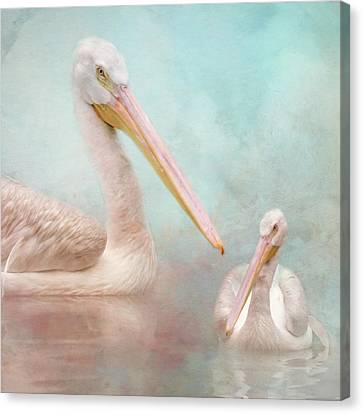 The Elegant White Pelican Canvas Print