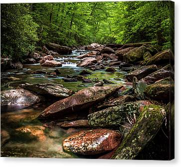 The Forest Primeval Canvas Print