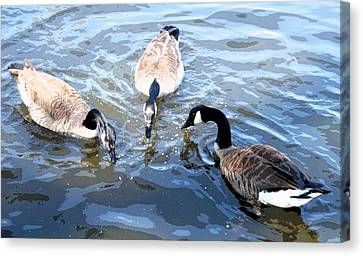 Triple Geese Canvas Print