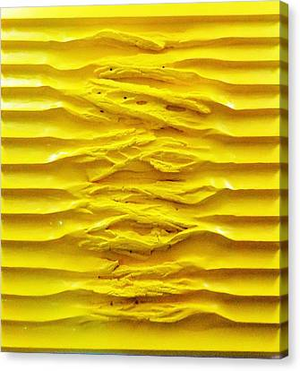 U Series IIi. Yellow Synchronous  Canvas Print