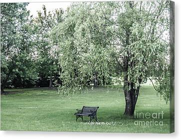Under The Willow Tree Canvas Print
