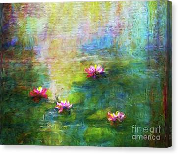 Water Lilies In Morning Mist Canvas Print