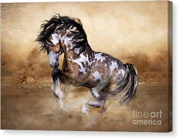 Wild And Free Horse Art Canvas Print