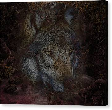 Wisdom Of The Forest Wolf Canvas Print
