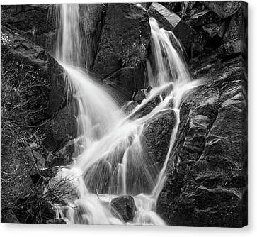Yosemite Creek 01 Canvas Print