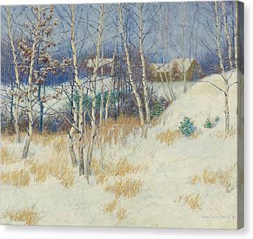 White Birch Trees Canvas Prints Page 19 Of 35 Fine Art America