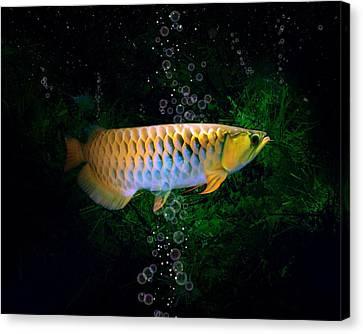 Gold Dragon Fish Arowana Canvas Art Print Poster Wall Hangings Living Home Decor