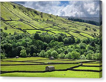 Yorkshire Dales Sheep Picture PANORAMA CANVAS WALL ART Print Green
