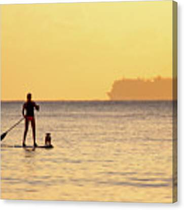 Evening Paddle Canvas Print by David Buhler