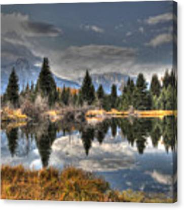 Teton Beaver Pond Canvas Print by David Armstrong