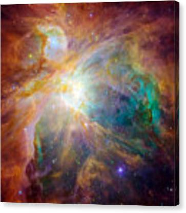 The Orion Nebula Canvas Print by Stocktrek Images