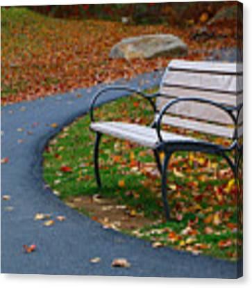 Bench On The Walk Canvas Print by Rick Morgan