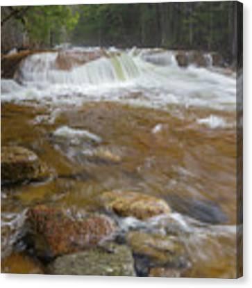 Pemigewasset River - Franconia Notch State Park New Hampshire Canvas Print by Erin Paul Donovan