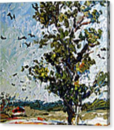A Tree On My Way Canvas Print by Ginette Callaway