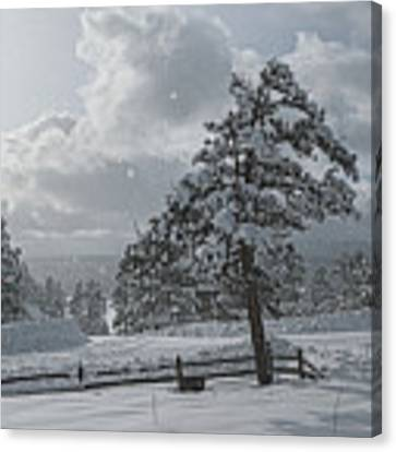 A Winter Storm In Pagosa Canvas Print by Jason Coward