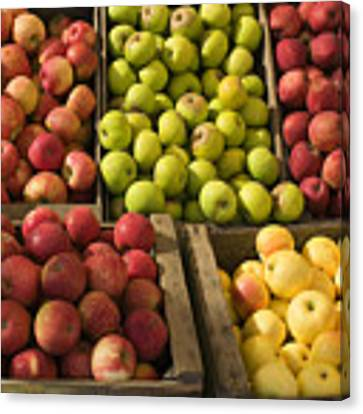 Apple Harvest Canvas Print by Garry Gay