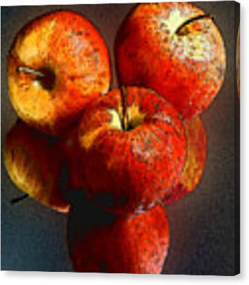 Apples And Mirrors Canvas Print by Paul Wear