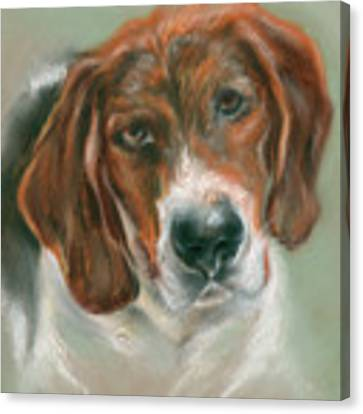 Basset Hound Mix Pup Canvas Print by MM Anderson