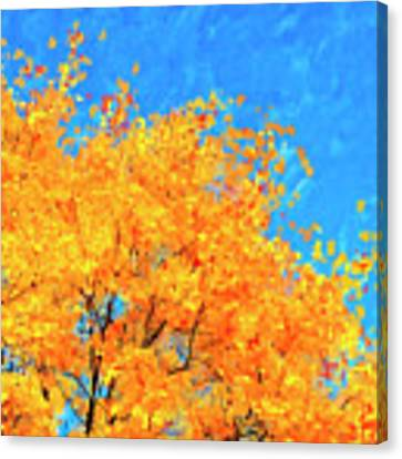 The Power Of Color Canvas Print by Mark Tisdale