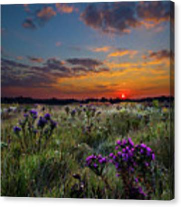 Bonnie's Meadow Canvas Print