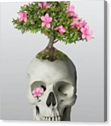 Bonsai Skull Canvas Print by Ivana Westin