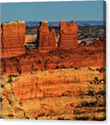 Chocolate Drops Canvas Print by Greg Norrell