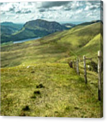 Distant Path Canvas Print by Nick Bywater