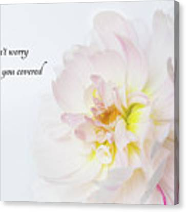 Don't Worry Canvas Print by Mary Jo Allen
