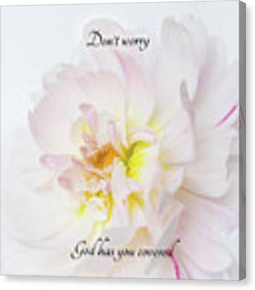 Don't Worry Square Canvas Print by Mary Jo Allen