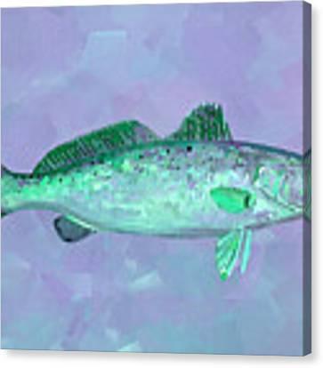Fanciful Lavender Mint Sea Trout Canvas Print by Shelli Fitzpatrick